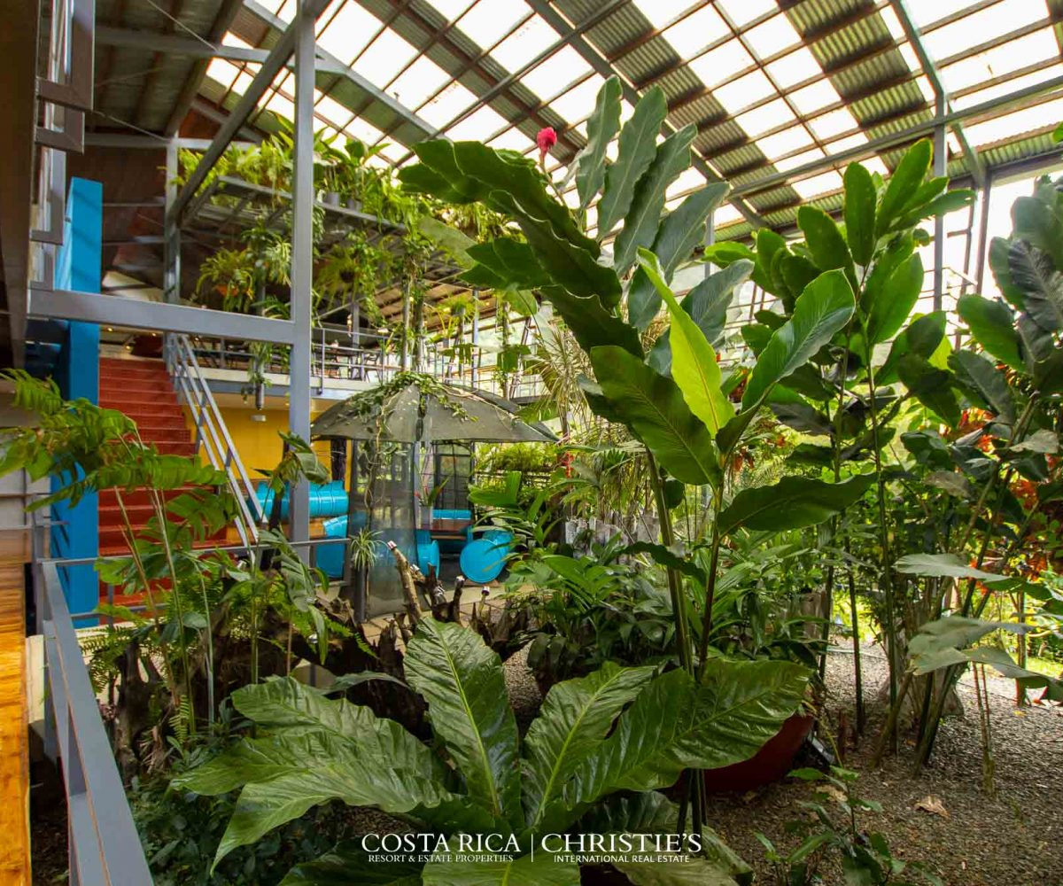 costa rica christies stunning rainforest estate in rio celeste-16